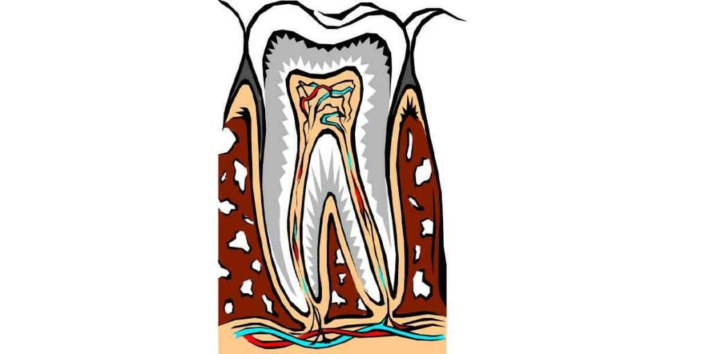 Signs You Need To Call Your Dentist And Schedule An Appointment Now! Part 2 Of 2